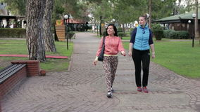 Two beautiful woman walking in the park in the summer. Two woman walking in the park in the summer stock video footage