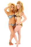 Two Beautiful Women in Bikinis Royalty Free Stock Photos