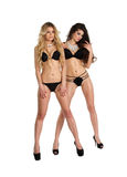 Two beautiful women in black erotic lingerie Stock Photos