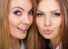 Two beautiful women, blonde and brunette posing Royalty Free Stock Image