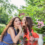 Two beautiful women at cafe Stock Photography