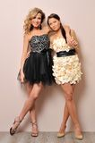 Two beautiful women in fancy dresses. Royalty Free Stock Photography