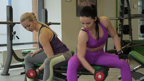 Two beautiful women have fun talking and doing exercises with dumbbells. Female athletes sit on one bench and train their biceps by lifting heavy sports stock footage