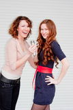 Two  beautiful women with a microphone in hands Royalty Free Stock Image
