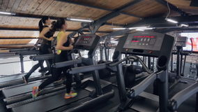 Two beautiful women run in running machine in fitness center. In gym with many training equipment do their exercise sportswomen. One is tall with long ponytail stock video footage