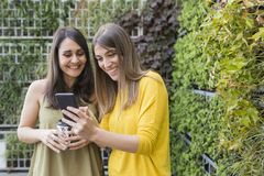 Two beautiful women taking selfie with mobile phone. green background. One is holding a cup of coffee. They are laughing and royalty free stock photography