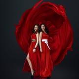 Two beautiful women Royalty Free Stock Image