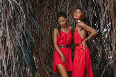 Two beautiful young fashionable models in red dresses outdoors at sunset. Two beautiful young fashionable models in red dresses outdoors stock images