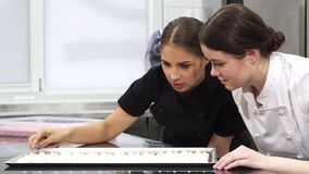 Two female confectioners examining meringues on a tray. Two beautiful young female professional pastry chefs working together at the kitchen preparing desserts stock footage