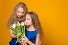 Two beautiful young girl with a bouquet of flowers Royalty Free Stock Images