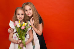 Two beautiful young girl with a bouquet of flowers Stock Photos
