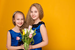 Two beautiful young girl with a bouquet of flowers Royalty Free Stock Photos