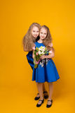 Two beautiful young girl with a bouquet of flowers Stock Photography