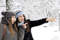 Two beautiful young girls Royalty Free Stock Images