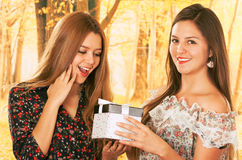 Two beautiful young girls with a gift box Royalty Free Stock Image
