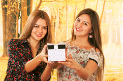 Two beautiful young girls with a gift box Royalty Free Stock Images
