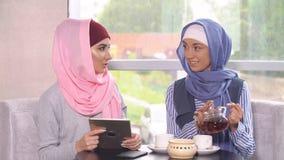 Two Beautiful Young Muslim Women in Cafe Communicate. Stock Photo