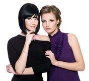Two beautiful young sensual glamour women Stock Photography