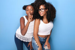 Two beautiful young sisters posing. stock images