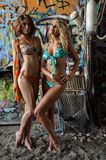 Two beautiful young swimsuit models posing sexy in front of graffiti background Royalty Free Stock Images