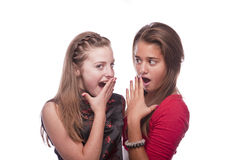 Two beautiful young teenage girls. Photo of a two nice looking young teenagers posing isolated on a white background Stock Photo