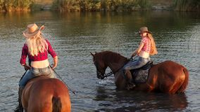 Two girls with horses swimming in lake in summer. stock video