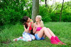 Two beautiful young women friends. Stock Photos