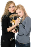 Two beautiful young women with pekingese Royalty Free Stock Photography