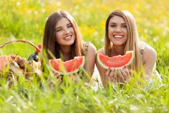 Two beautiful young women on a picnic Royalty Free Stock Photography