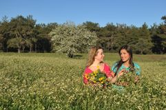 Two beautiful young women standing in meadow Stock Photo