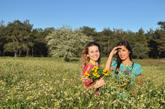 Two beautiful young women standing in meadow royalty free stock image