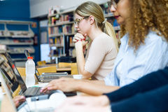Two beautiful young women studying in a university library. Portrait of two beautiful young women studying in a university library royalty free stock photo