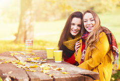 Two beautiful young women talking and enjoying on an autumn day Royalty Free Stock Image