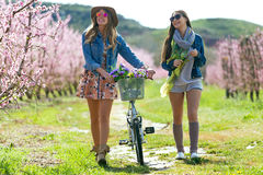Two beautiful young women with a vintage bike in the field. Portrait of two beautiful young women with a vintage bike in the field Stock Photos