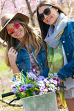Two beautiful young women with a vintage bike in the field. Stock Images