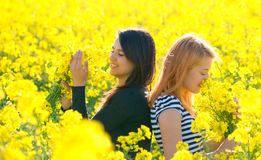 Two beautiul girls having fun in the colza field Stock Images