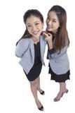 Two beauty businesswomen Royalty Free Stock Image
