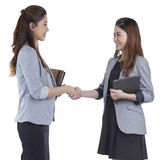 Two beauty businesswomen handshaking Royalty Free Stock Image