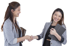 Two beauty businesswomen handshaking Stock Image