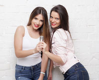 Two beauty hipster girls with a microphone Royalty Free Stock Photo
