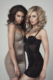 Two beauty ladies in lingerie Royalty Free Stock Photos