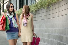 Two beauty women having fun together holding shopping bags with luggage stock image