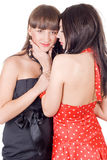 Two beauty young women Royalty Free Stock Image