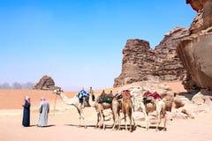 Caravan of camels in Wadi Rum desert, Jordan stock image