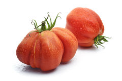 Two Beefsteak Tomatoes with Drops Royalty Free Stock Images