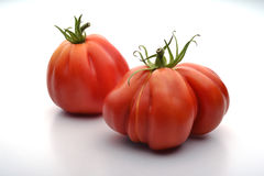 Two Beefsteak Tomatoes Stock Photography