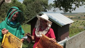 Two beekeepers in green and red special attire, collecting honey. Apiculture, frames beehive, two beekeepers in green and red special attire, collecting honey stock video