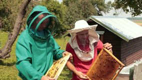 Two beekeepers in green and red special attire, collecting honey. Beekeeping, frames beehive, two beekeepers in green and red special attire, collecting honey stock video footage