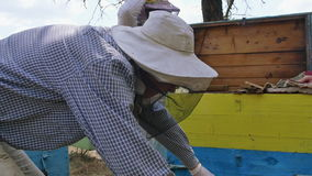 Two beekeepers working with frame to produce honey. 4K stock footage