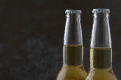 Two beer bottles on dark background with copy space Royalty Free Stock Images